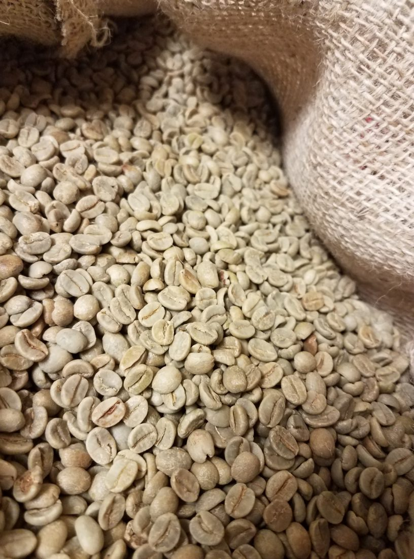 green unroasted brazilian coffee beans